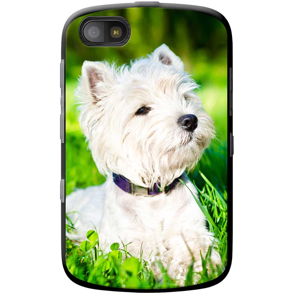 ... about West Highland Terrier Westie Dog Hard Case For Blackberry Models